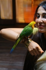Actress Parvathy Nair-Stills-17
