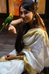 Actress Parvathy Nair-Stills-18